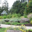 Cook Park Tupling Butterfly Gardens